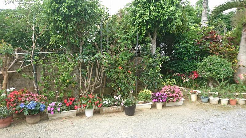 確かに、お庭に対する愛着が伺えるよね。