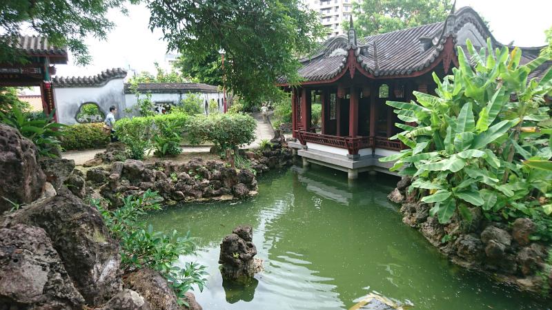 水中の苔のせいでこんな濁った緑色になるのかな。