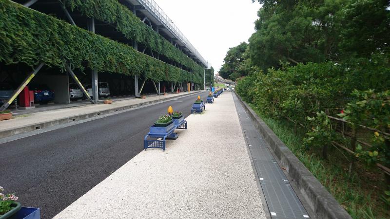 みどり生い茂る左側が立体駐車場。