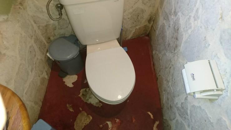 このようなトイレ状況。