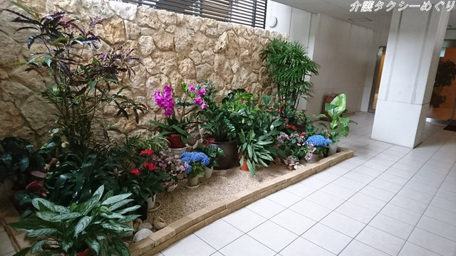 本館と東館をつなぐ通路に癒しの花園が。