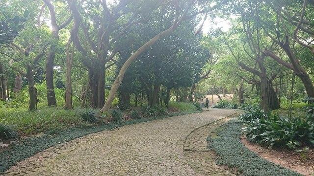 識名園正門から育徳泉につながる石畳通路