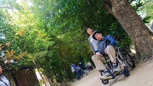 フクギ並木ロードと車椅子ユーザー旦那・奥様
